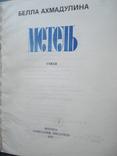"Белла Ахмадулина ""Метель."", фото №5"