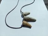 Амулет- зуби., фото №4