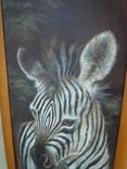 Картина Зебра 94,7*34,7см фото 3