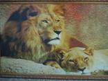 Картина Львы 103*55 см фото 2
