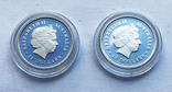 Набор монет цветы Австралии 5 шт, платина. 1/10 oz, фото №5