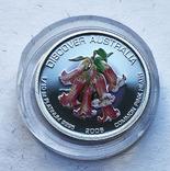 Набор монет цветы Австралии 5 шт, платина. 1/10 oz, фото №8