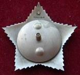 Орден Суворова I ст, копия, фото №6