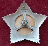 Орден Суворова I ст, копия, фото №8