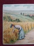 Старинная рисованная открытка, фото №5