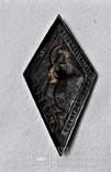 Знак 7 лет Октября СССР, копия, 1924г, №014 (2), фото №10