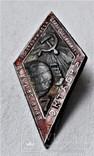 Знак 7 лет Октября СССР, копия, 1924г, №014 (2), фото №2