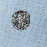 Полугрошь 1565, фото №4