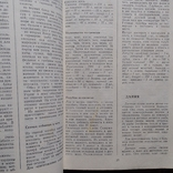 Особенности кухни народов мира 1990р., фото №6