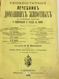 Лечебник домашних животных 1896 г, фото №2
