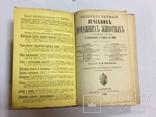 Лечебник домашних животных 1896 г, фото №5