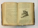 Лечебник домашних животных 1896 г, фото №10