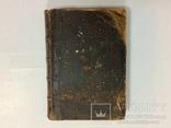 Лечебник домашних животных 1896 г, фото №13