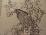 Графика - птица, фото №3