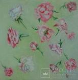 Розы., фото №2