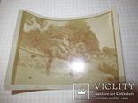 Военный на коне  1 мировая война в Галиции Жук, фото №3