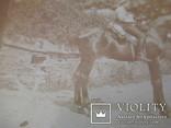 Военный на коне  1 мировая война в Галиции Жук, фото №7