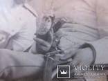 Военные с бутылкой Харбин Новый город С.В.Сендковский, фото №10