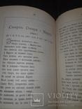 1881 Старицький - Пiснi i думи в 2 частинах, фото №10