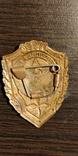 Отличник ВВС, фото №3