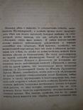 1865 Начало и характер пугачевщины, фото №8