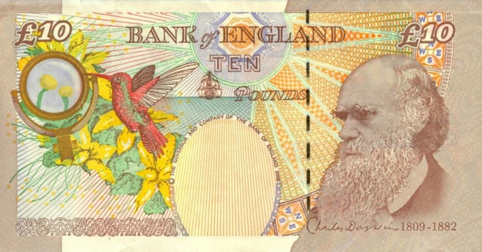 Banknote blunders: incidents and mistakes on paper money