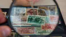 How much can you earn on Soviet rarities?
