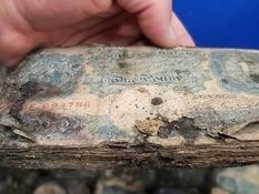 Под половицами лондонского магазина нашли клад времен Второй мировой войны
