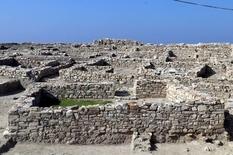 800-летние следы кошек и собак были найдены на западе Турции