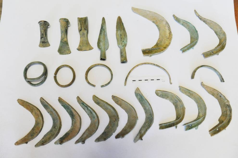 Пес-археолог и клад бронзового века