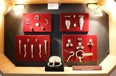 Гарнитура конской сбруи и аксессуары в норманнском стиле: подарок коллекционера винницкому музею