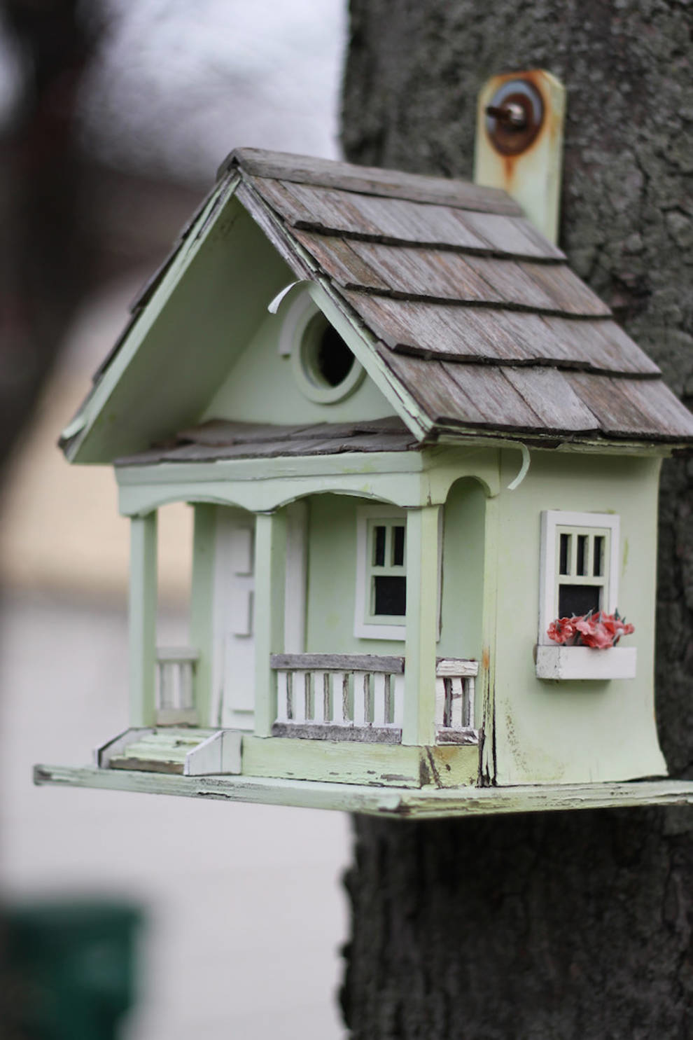 Бесподобные дома для зажиточных пернатых