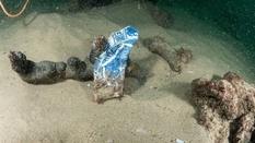 «Находка десятилетия»: торговое судно, затонувшее 400 лет назад и обнаруженное у побережья Португалии