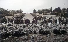 Как и когда открыли ботанический сад имени Николая Глушко?