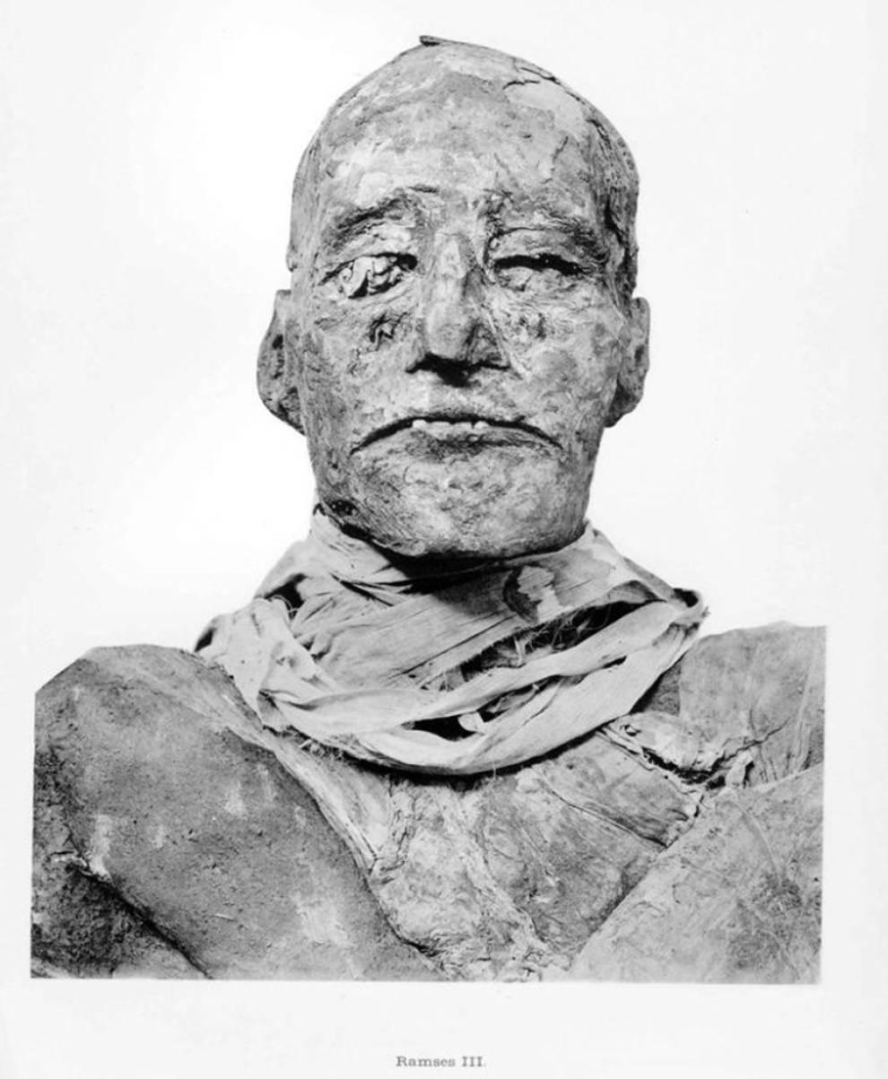 Rare photos of mummies from the British Egyptologist's catalog