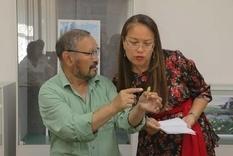 Мешок золотых, бронзовых и железных украшений нашли в Казахстане