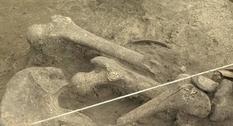 На Ровненщине выкопали древний скелет человека со странным черепом
