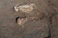 Rider from the past: the first find under the mound in Zaporizhzhya region