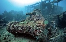 Поглощенные природой: подборка фотографий забытых танков времен Второй мировой войны