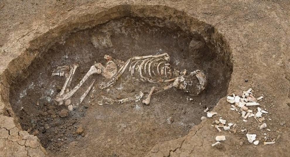 Неподалеку от реки Дон обнаружили древний курган