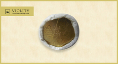 Невероятная инвестиция: ролл монет продан за 5500 грн