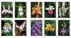Цветы в филателии: выпущены марки с изображениями орхидей