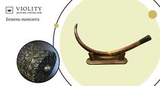 За 70 000 гривен приобретен коллекционный бивень мамонта