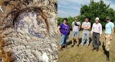 Древний могильник: под Львовом ученые изучают урочище