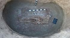 Найдены останки человека с черепом, подверженным мацерации