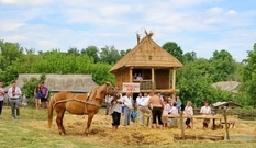 In the Odessa region they built a Tripolye house without a single nail