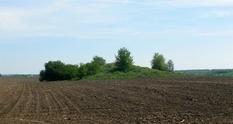 Both along and across: in Vinnytsia was rummageda scythian mound