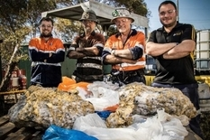 Australian miners found gold nuggets weighing more than 250 kilograms