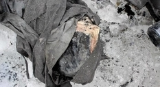 75 years Swiss glacier hid a married couple