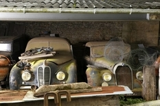 Under a canopy in the French province rot rare cars